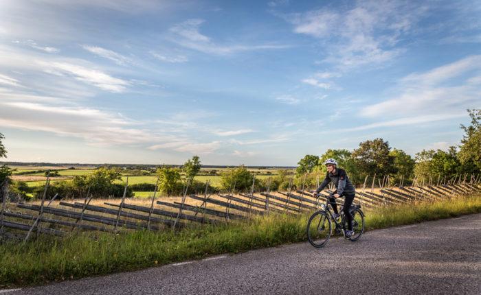 Cykla på södra Gotland