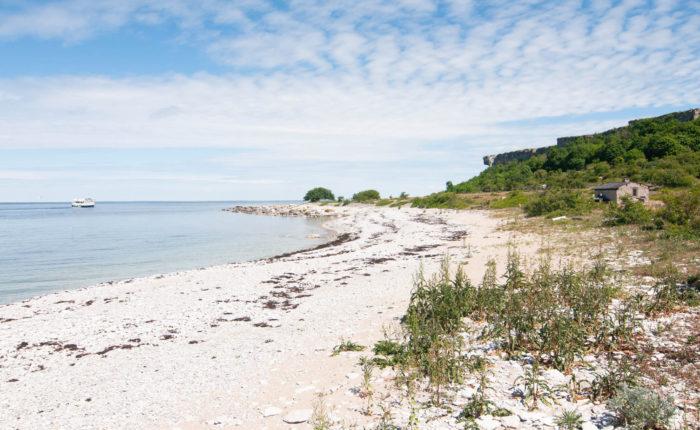Strandvandring på Gotland
