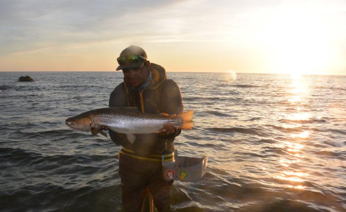 Fiskeguidning standard