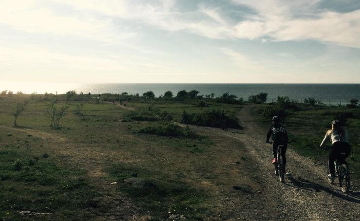 Guidad cykeltur - Kulinariska Gotland