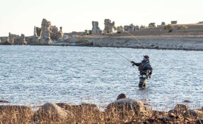 Häng på havsöringsfiske